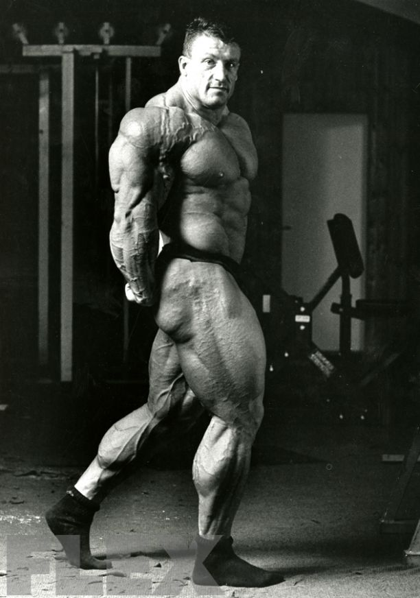 Image result for dorian yates