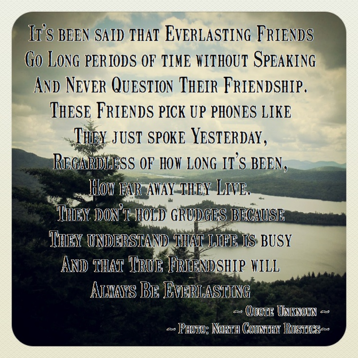 Busy Friends Funny Quotes: Everlasting Friendship Quote