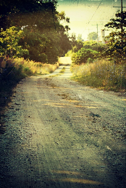 17 Best Images About Down The Country Lane On Pinterest