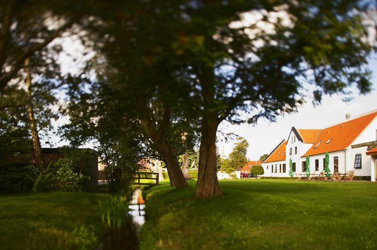 Garden at Aalbæk gl. Kro