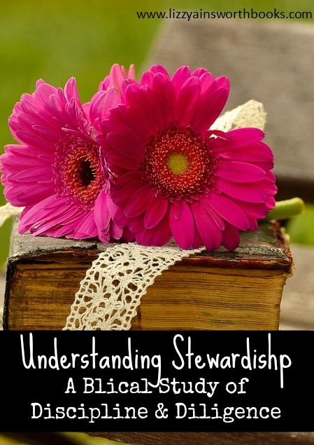 Discipline and Diligence and Biblical Stewardship