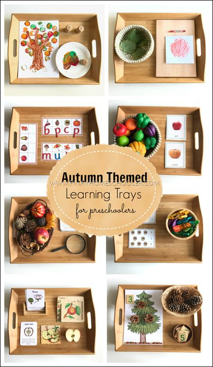 Autumn themed learning trays for preschoolers