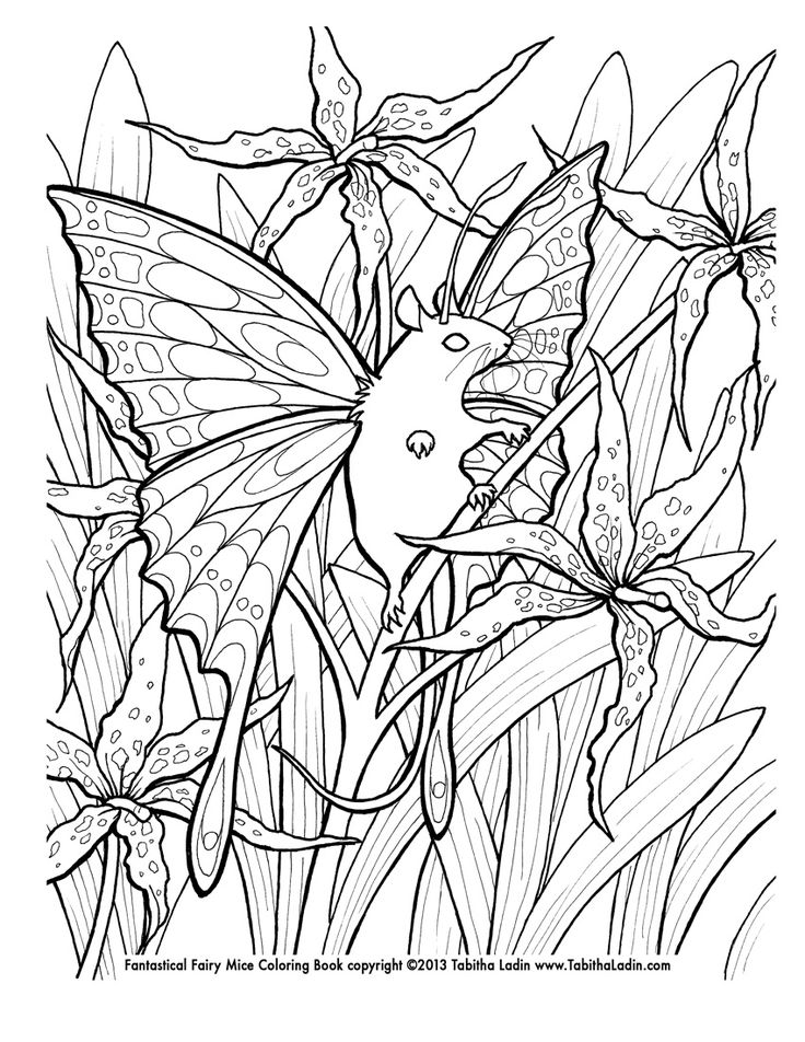 29 best Coloring pages images on Pinterest Coloring books - new coloring pages about science