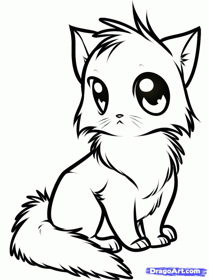 Draw a Cute Anime Cat, Step by Step, Drawing Sheets, Added by Dawn ...