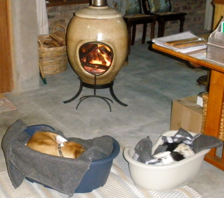 A dogs life - nice & cosy on a chilly winters evening