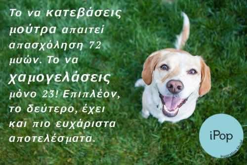 Χαμογέλα! Κάνει καλό. - http://ipop.gr/themata/vlepw/chamogela-kani-kalo/