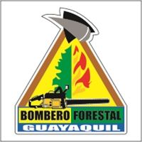 Divisi?n T?cnica y Ambiental Bombero Forestal Logo