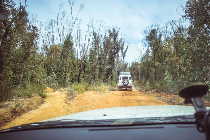 Who says you need a car for a wild weekend adventure from Sydney? Here are the…