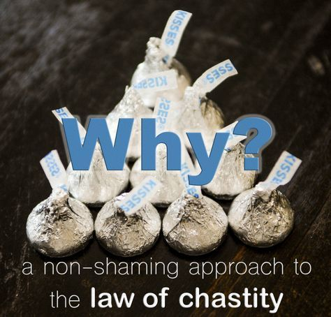 The BEST Law of Chastity lesson I have ever seen-FHE