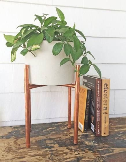 17 Best Ideas About Pflanztöpfe On Pinterest   Pflanzentöpfe, Ses ... Jasmin In Blumentopf Zuchten Wichtige Tipps