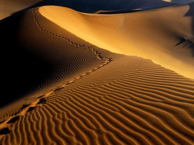 Africa: il deserto del Namib in Namibia