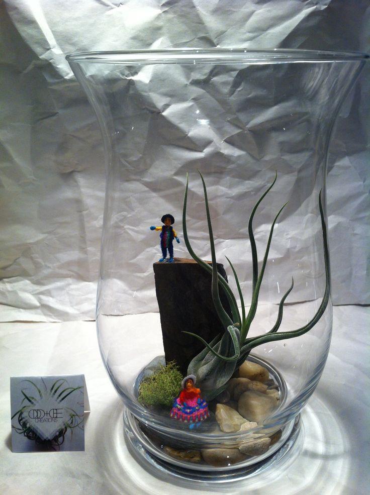 Medium Large Jar Terrarium 2 - $35