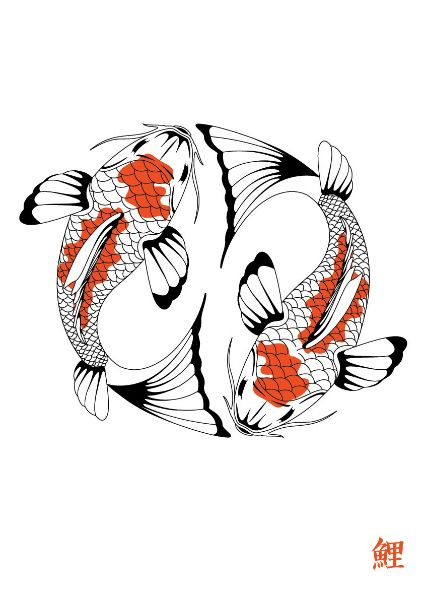 1441 best koi images on pinterest fish drawings pisces for Koi fish pisces