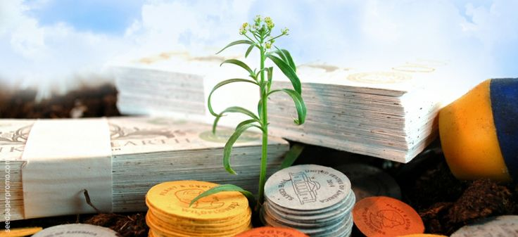 Seed paper for bills and coins that grow! A clever seed paper promotion for creative marketing!