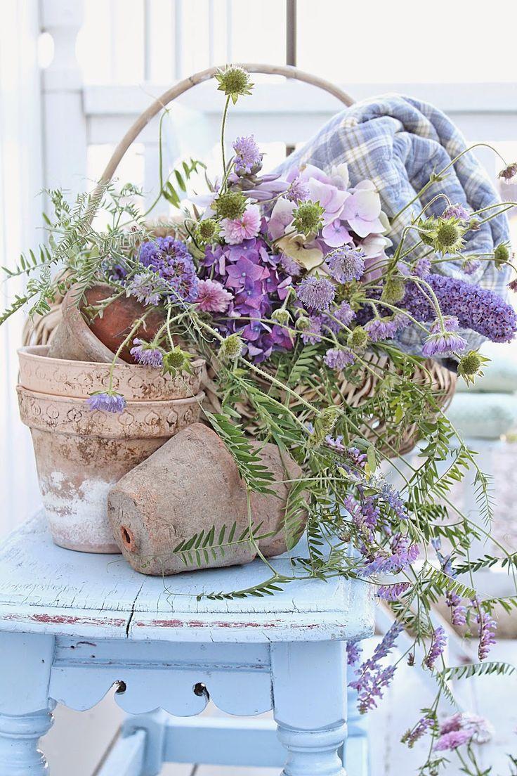 Ana Rosa / floral arrangements                                                                                                                                                                                 More