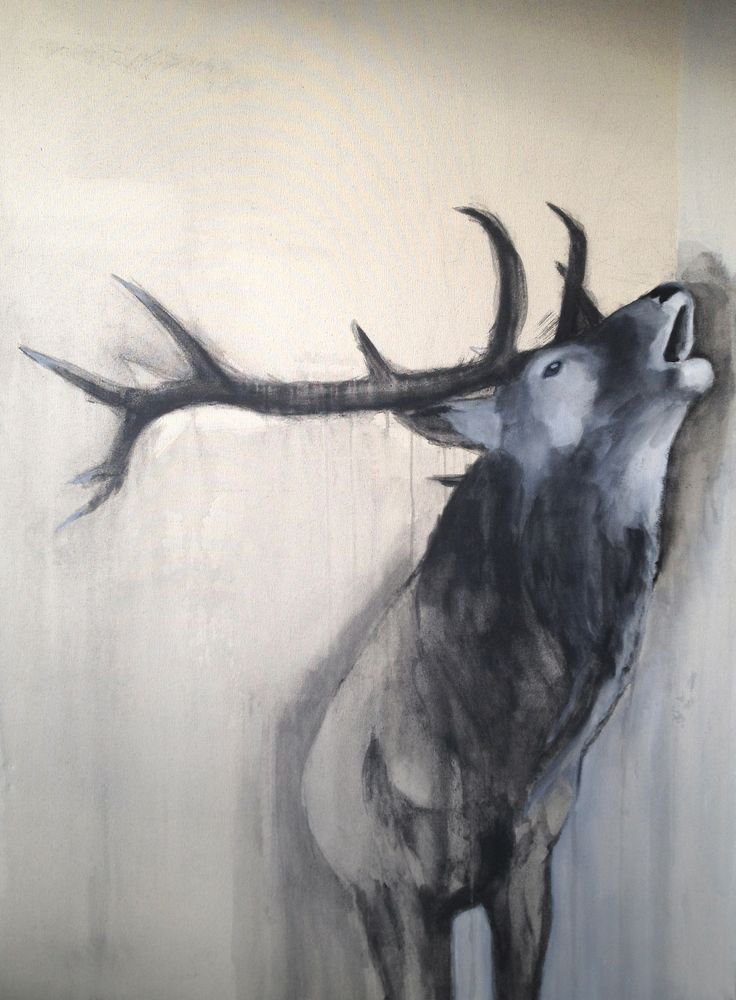 Stag 130cm x 94cm Charcoal, Acrylic and Oil on Canvas 2014 Tom Symonds