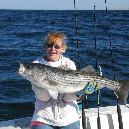 314 Best Striped Bass Pics Images On Pinterest