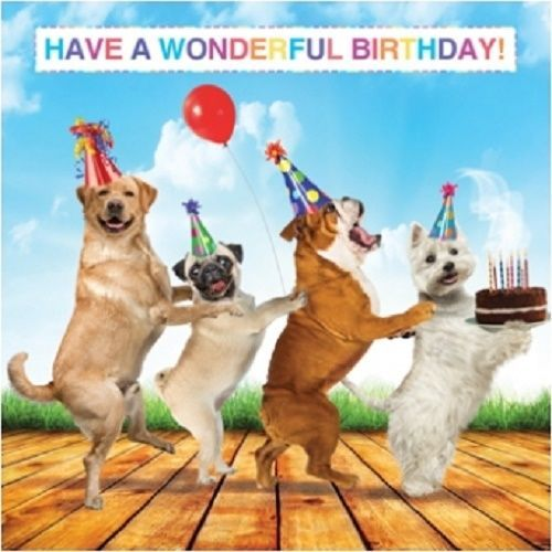 Details About Dog Lovers Luxury Glitter Birthday Greeting