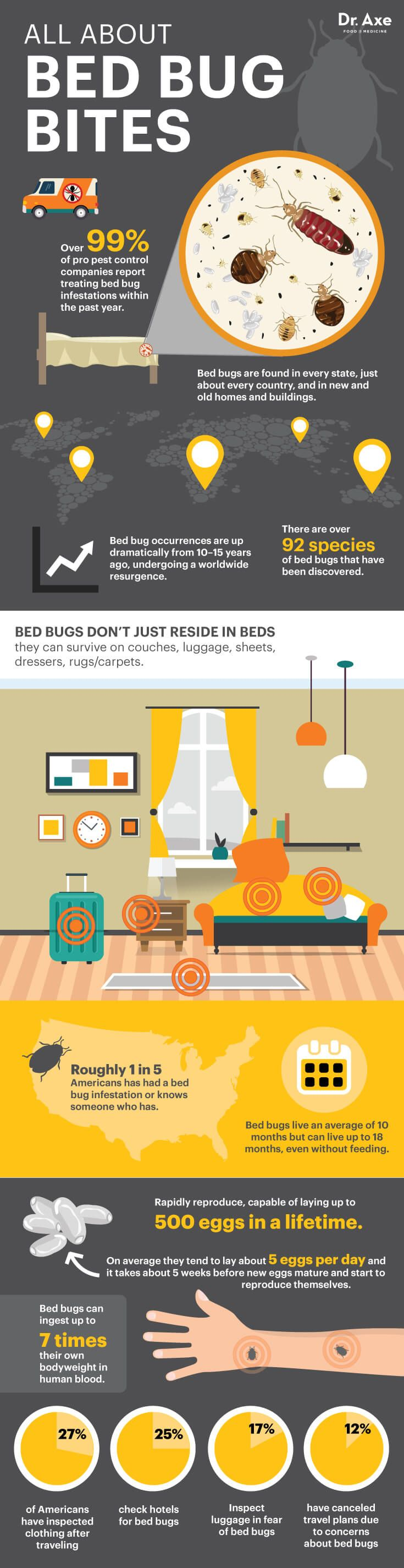 All about bed bug bites - Dr. Axe http://www.draxe.com #health #holistic #natural