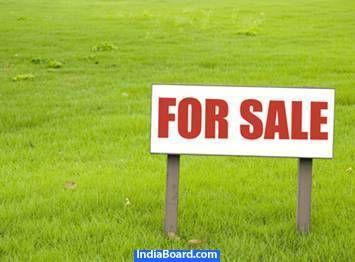 Open Plots | Open Plot in Pachpadra, Balotra, Jaipur | Properties in jaipur | Gusaiji-Real Estate-Jaipur ,Jaipur -230658