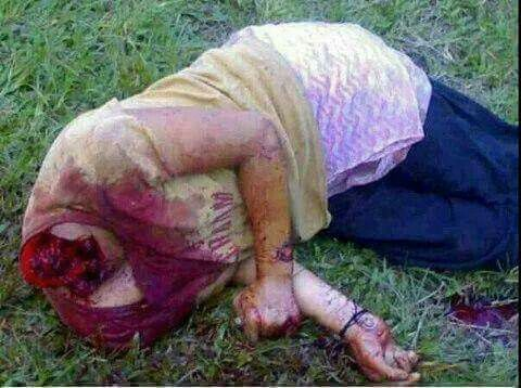 Rohingya Burma . Cruel killing of Muslims.. Post by Engr. Hashim Siddiqui.