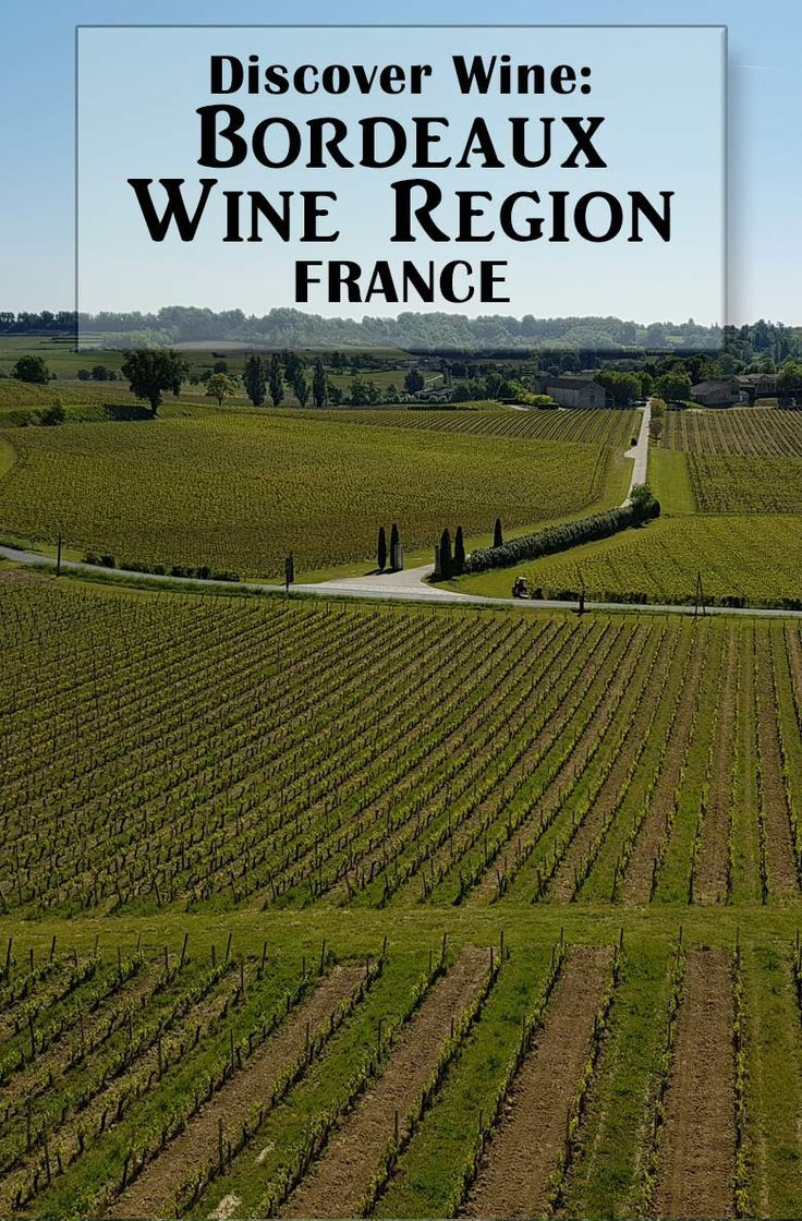 49 best bordeaux wine images on pinterest bordeaux for Bordeaux france