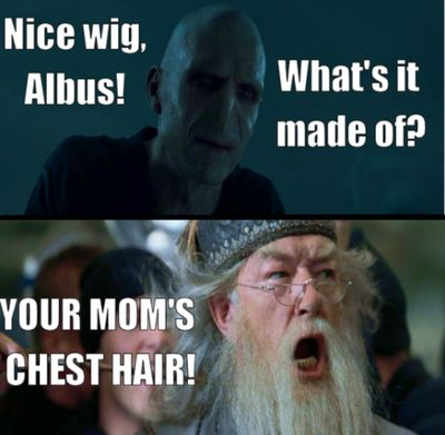 Dumbledore and VoldemortLaugh, Harrypotter, Mean Girls Quotes, Meangirls, Chest Hair, Funny Stuff, Humor, Mom Chest, Harry Potter
