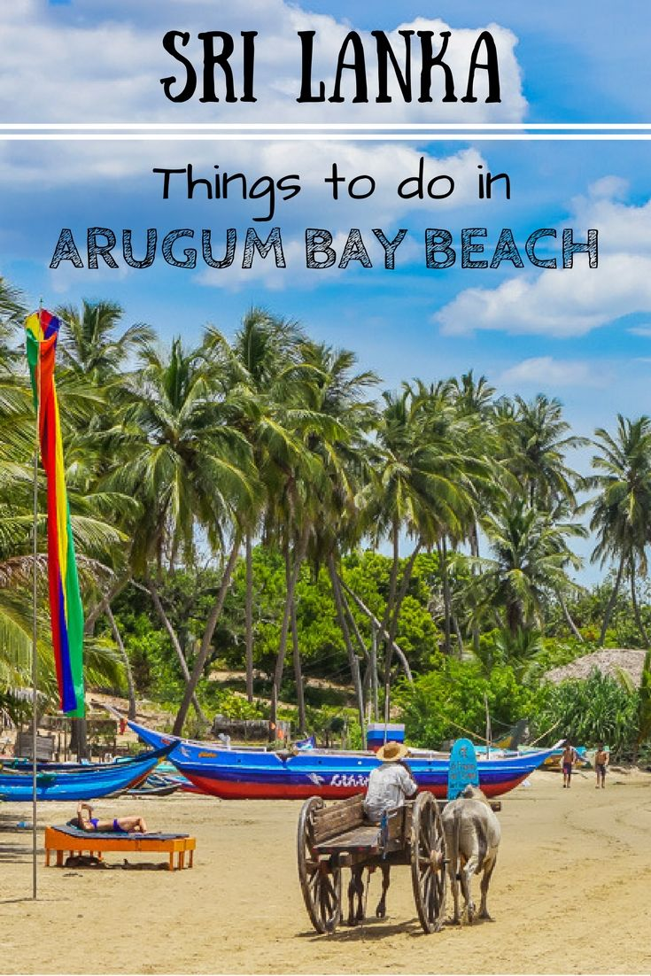 In this things to do in Arugam Bay, Sri Lanka, beach guide we cover what to do and see in and around the bay aside from those lazy days in the sun. | Beaches of Sri Lanka | Top Places To stay in Sri Lanka | Surf in Arugam Bay | Highlights of Arugum Bay | Where to stay in Sri Lanka | Best beaches in Sri Lanka | Top beaches in Sri Lanka | Backpacking Sri Lanka | Sri Lanka on a Budget