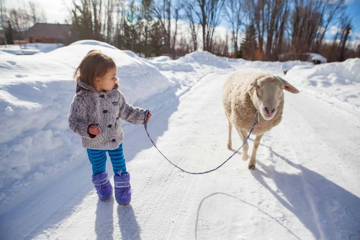 Some days are for the little kiddos to lead the way. Happy holidays from the Patagonia family. Photo: Becca Skinner