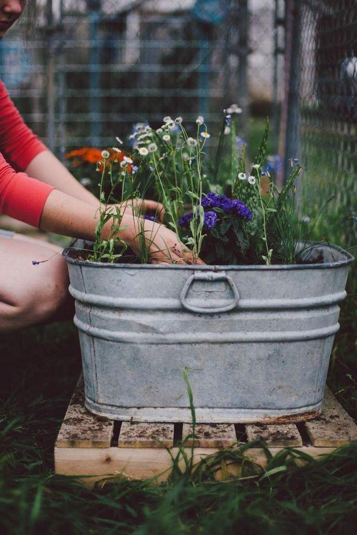die alte Zinkwanne befüllen und bepflanzen