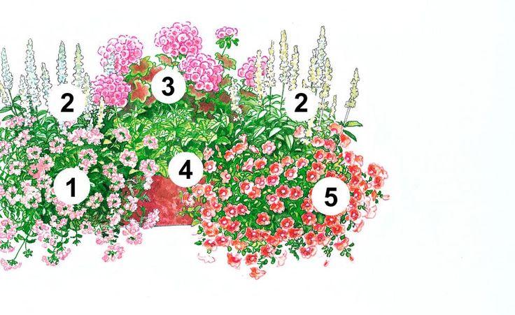 Farblich im Einklang, verbreitet dieser Blumenkasten einen angenehmen Erdbeerduft