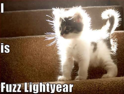Fuzz Lightyear!