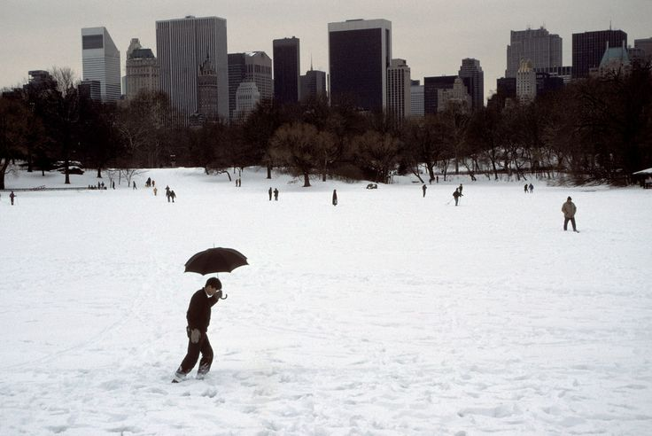 steve mccurry(1950- ), usa. new york city. 1994. central park in winter.