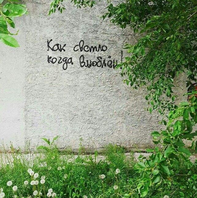 Цитаты о любви картинки на стенах