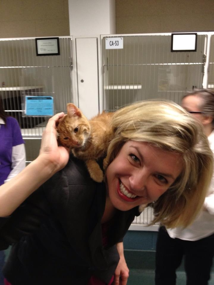 3/22/12 -This is Bart and our own Amanda Barren! He is four months old and very cuddly! He's at the Cleveland APL. Today, in honor of our #Fur-get-me-not Telethon, kittens are $33 and adult cats are just $3 because we are Channel 3!  You can call 216-566-PETS to doante to the telethon.