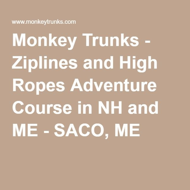 photograph about Monkey Joes Coupons Printable named Coupon monkey trunks : Itunes present playing cards discounts 2018
