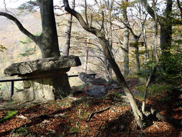 """Der P4 in der 'Hessischen Schweiz' (Naturpark Meißner - Kaufunger Wald). Aussichtspunkt """"Wolfstisch""""!   Der P4 in der 'Hessischen Schweiz' (Naturpark Meißner - Kaufunger Wald). Immer eine Wanderung wert und wundervoll auch im Herbst: das Plateau der Gobert mit dem Aussichtspunkt """"Silberklippe"""". Unterhaltsame, spannende Tourbeschreibung mit tollen Fotos!"""