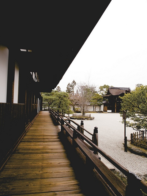 Ninna-ji temple, Kyoto, Japan one of my fav weekend destinations when I lived in Japanese.