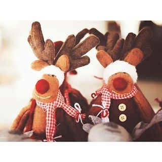 73 sleeps until Christmas ✨ ° ° Qotd- What time do you usually go to sleep on Christmas Eve? #followback #F4F #FF