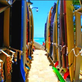 Hawaii, Waikiki beach, surfboards, sea