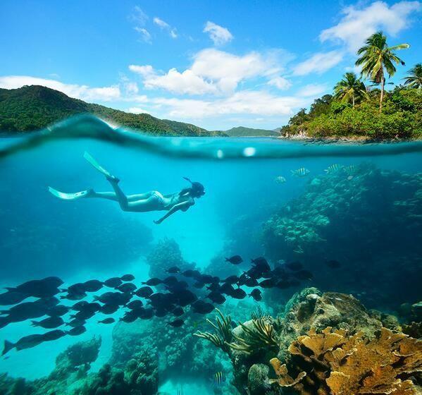 Buceo en el Caribe colombiano.