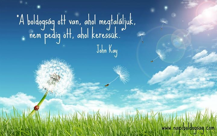 John Kay gondolata a boldogságról. A kép forrása: Napi Boldogság # Facebook