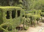 El Bosque Encantado - Madrid