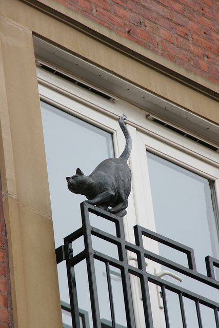 "One of the ""Cats of York"" by frog101, via Flickr"