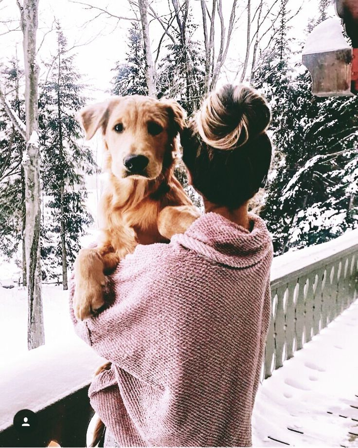 Messy bun and oversized sweater plus this golden retriever make for the perfect winter day