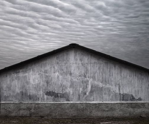 Robert Koch Gallery: Exhibitions