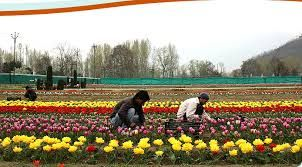 Visit #Kashmir and book now #kashmirtourism packages as per their need.