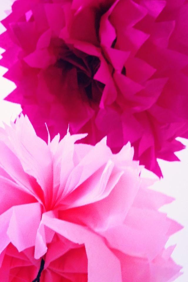 My wedding - Thurlestone 6/7/13  Tissue pom poms