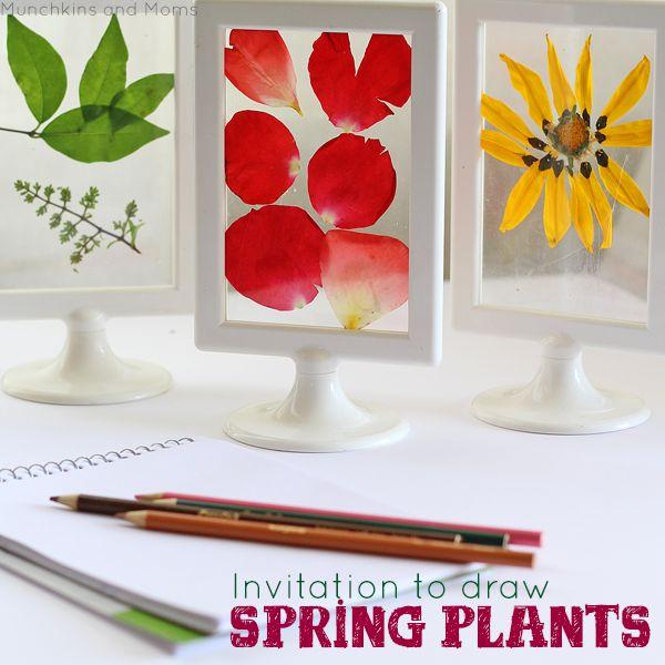 Spring-plants.png 600×600 pixels