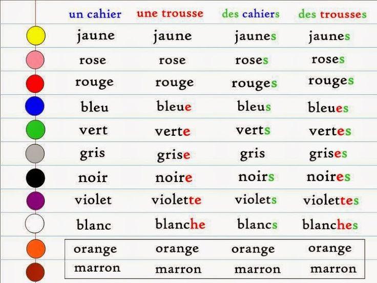 L'accord des adjectifs de couleur - français précoce - Débutant - Grammaire Française